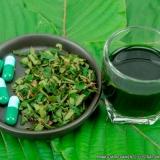 farmácia de produtos naturais para diabetes Bananal