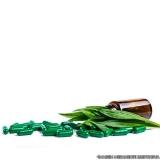 quem faz remédio natural para gastrite Vila Maria